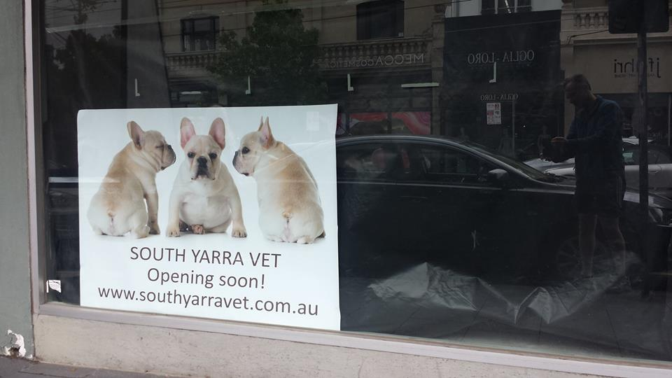 South Yarra Veterinary Clinic